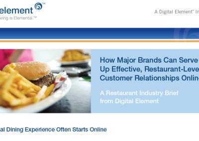 Digital Element Industry Brief