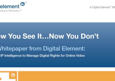 Digital Element White Paper